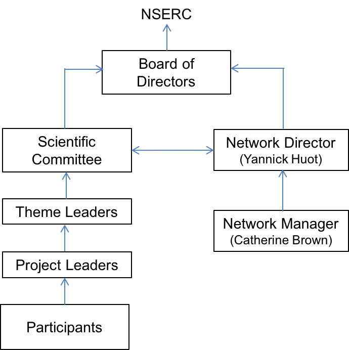 network-structure-EN
